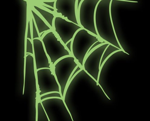 DOWNLOAD: Spiders Corner Web