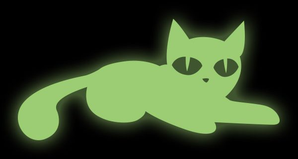 DOWNLOAD: Witches Cat